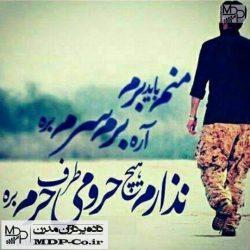 دانلود مداحی منم باید برم آره برم سرم بره | سید رضا نریمانی