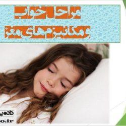 دانلود پاورپوینت فیزیولوژی خواب و مکانیزم های مغز - مراحل خواب