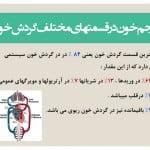 پاورپوینت آناتومی و فیزیولوژی قلب - گردش خون